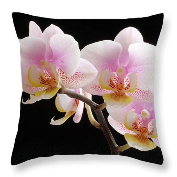 Pink Sensations Throw Pillow by Juergen Roth