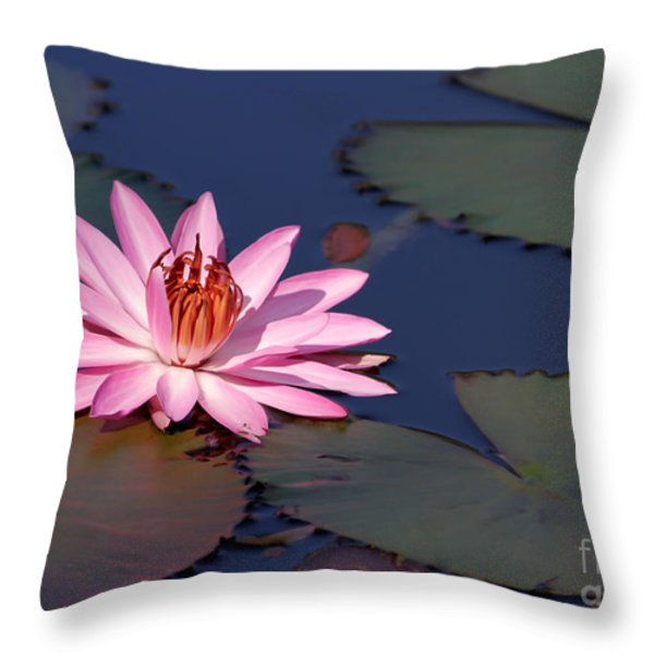 Pink Water Lily In The Spotlight Throw Pillow by Sabrina L Ryan