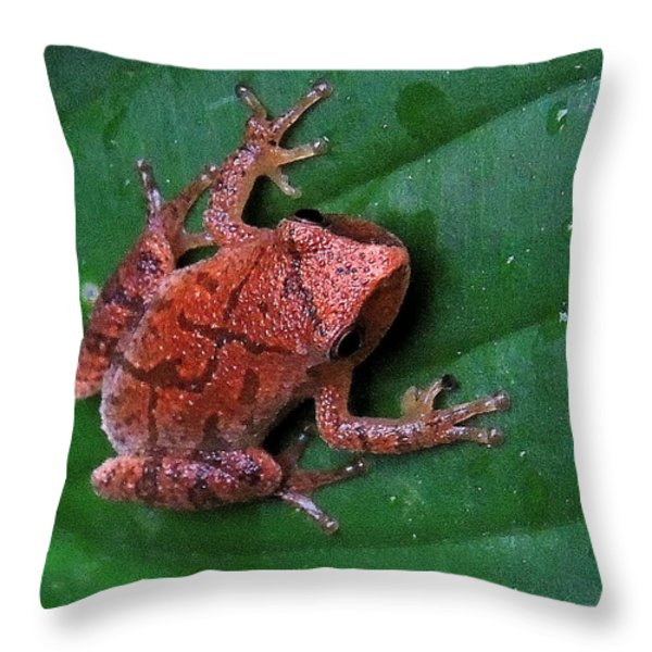 Pinkletink Throw Pillow by Mim White