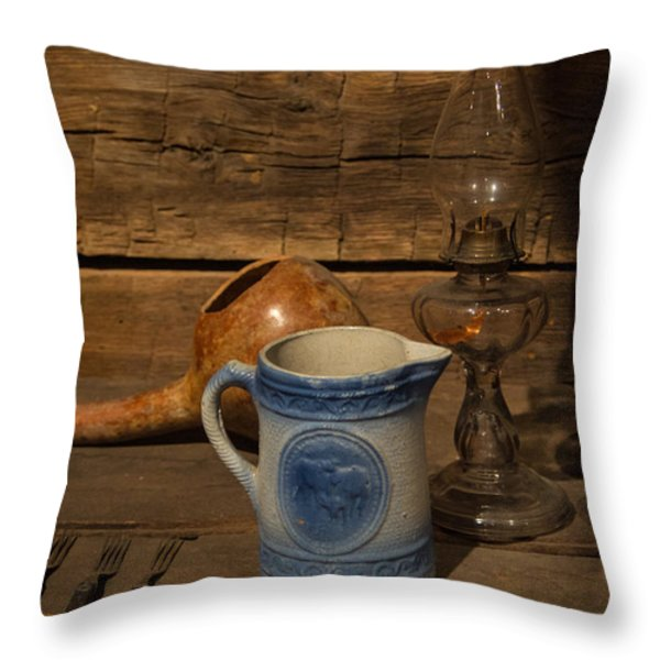 Pitcher Cup and Lamp Throw Pillow by Douglas Barnett