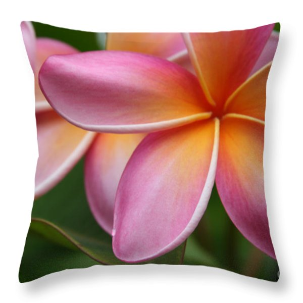 Places Of The Heart Throw Pillow by Sharon Mau