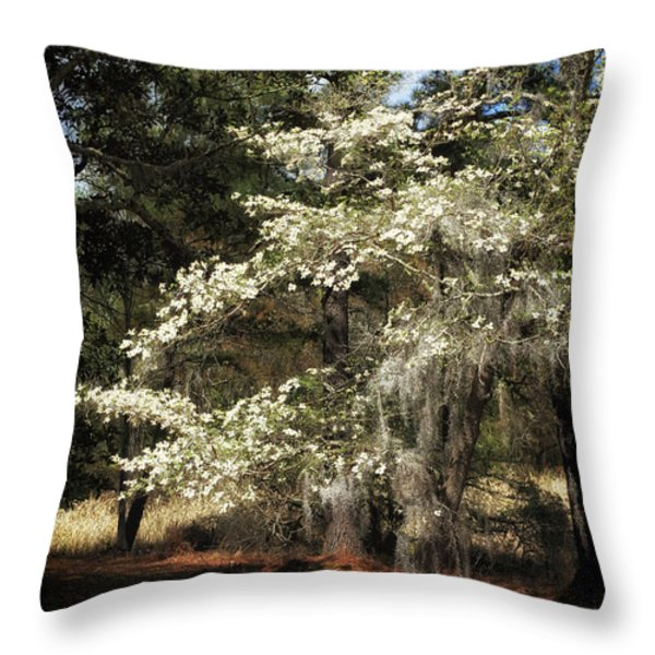Plantation Tree Throw Pillow by John Rizzuto