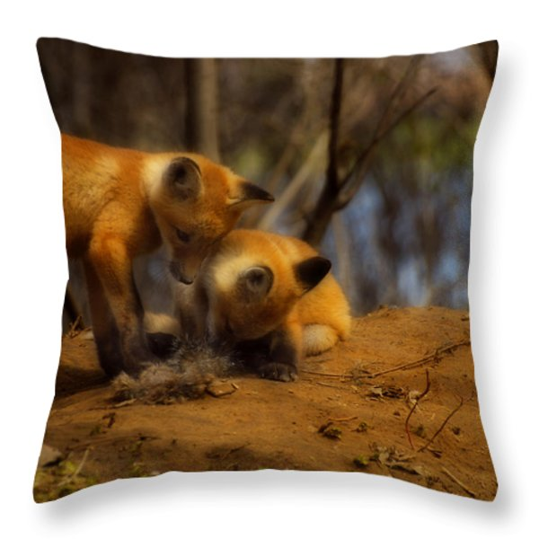 Play Time Throw Pillow by Thomas Young