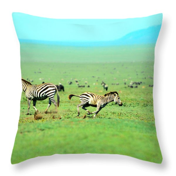 Playfull Zebras Throw Pillow by Sebastian Musial