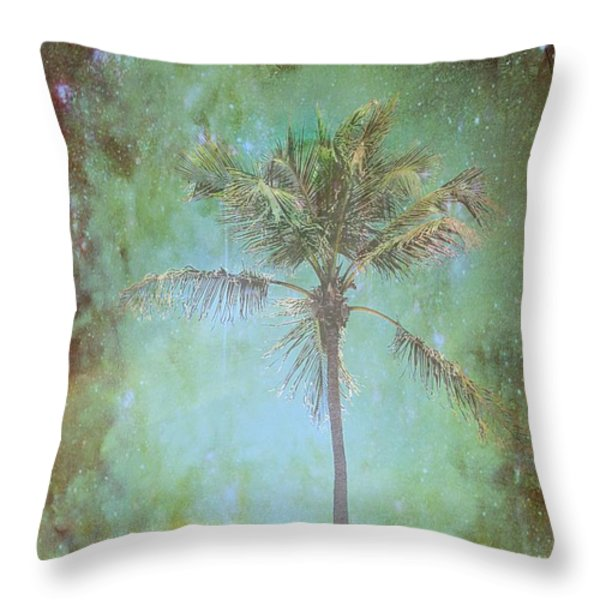 Pleasant Night To Be Alone Throw Pillow by Jan Amiss Photography