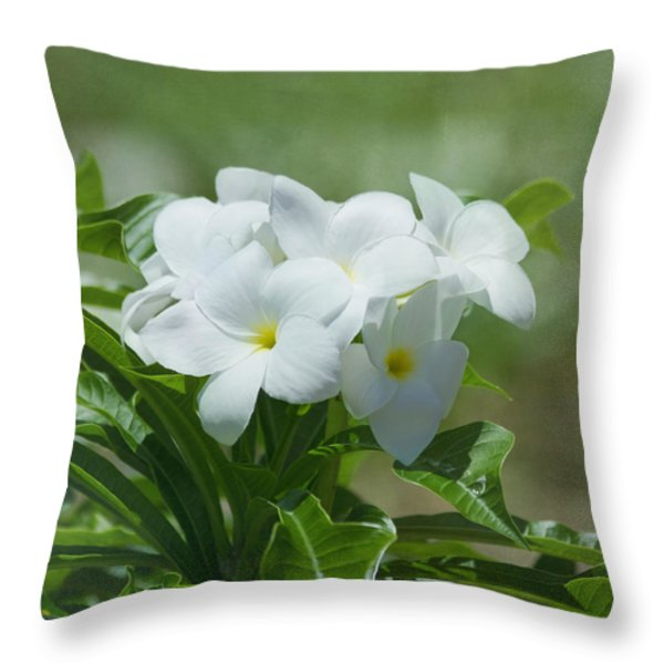 Plumeria - Tropical Flowers Throw Pillow by Kim Hojnacki