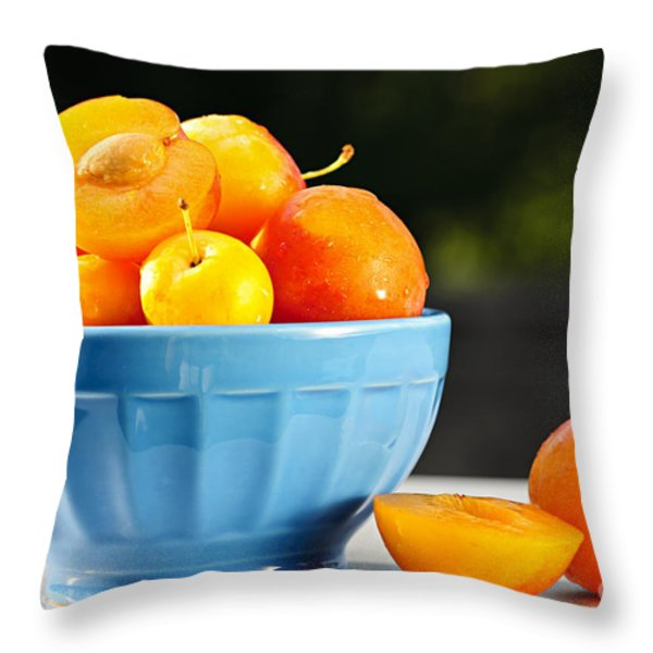 Plums In Bowl Throw Pillow by Elena Elisseeva