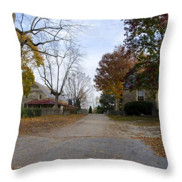 Plymouth Meeting Friends In Autumn Throw Pillow by Bill Cannon