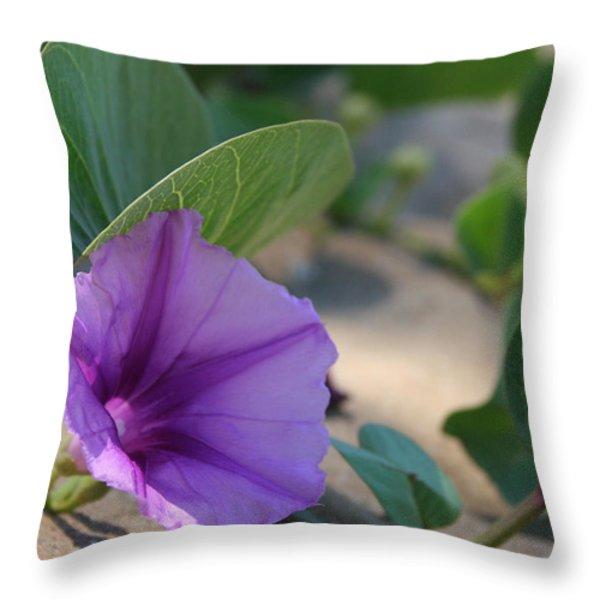 Pohuehue - Pua Nani O Kamaole Hawaii - Beach Morning Glory Throw Pillow by Sharon Mau