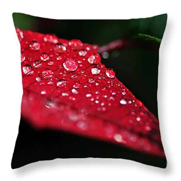 Poinsettia Leaf with Water Droplets Throw Pillow by Kaye Menner
