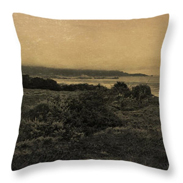 Point Lobos - An Antique Take Throw Pillow by Angela A Stanton