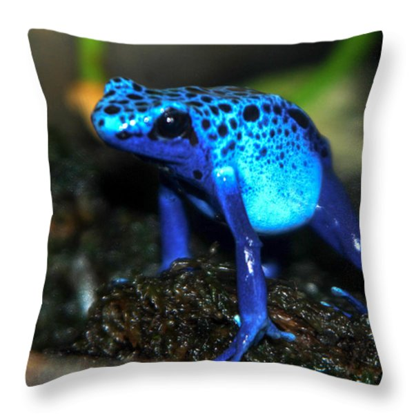 Poison Blue Dart Frog Throw Pillow by Optical Playground By MP Ray