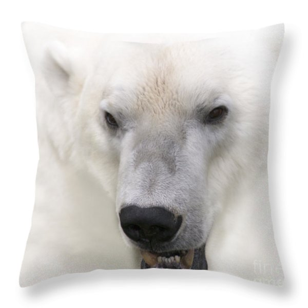 Polar Bear Portrait Throw Pillow by Heiko Koehrer-Wagner