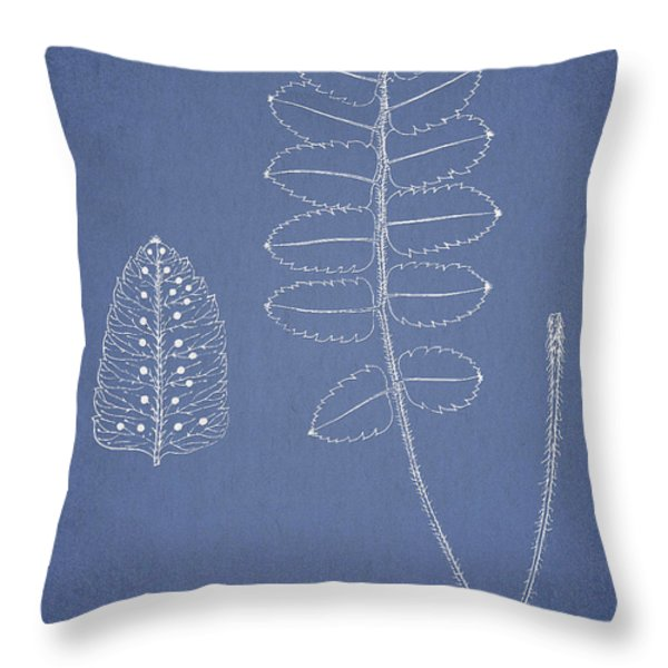 Polypodium Scottii Throw Pillow by Aged Pixel