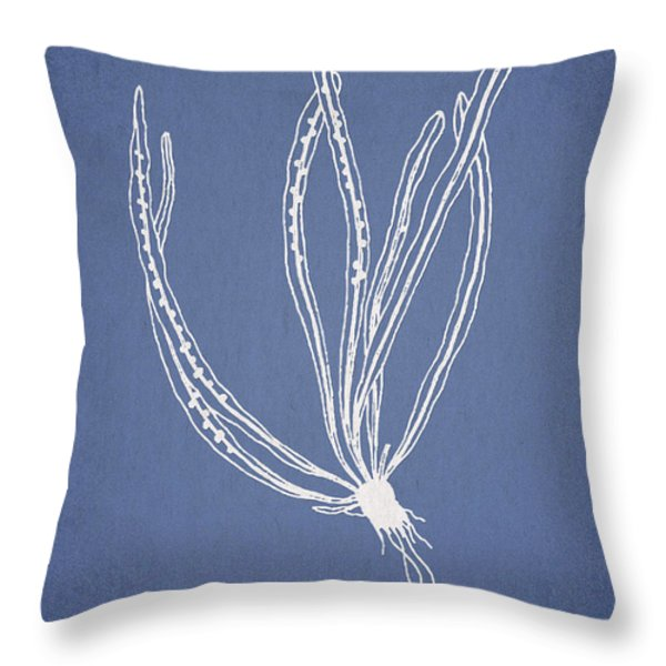 Polypodium subevenosum Throw Pillow by Aged Pixel