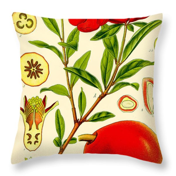 Pomegranate Throw Pillow by Nomad Art And  Design