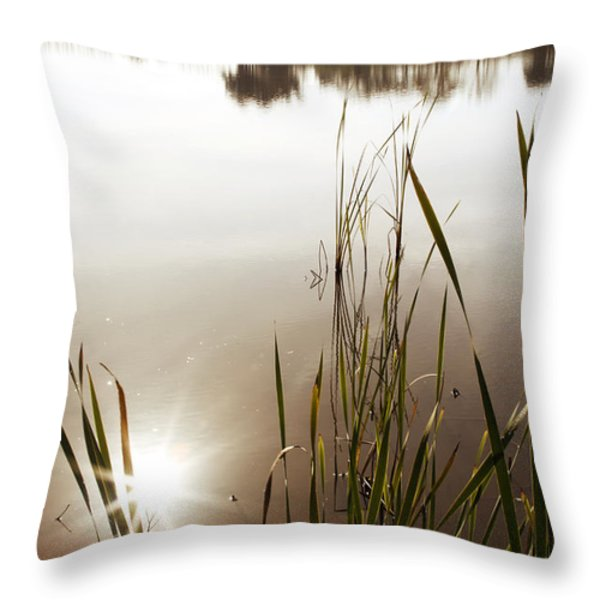 Pond Throw Pillow by Les Cunliffe
