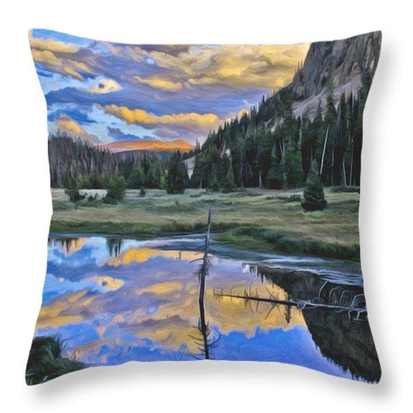 Pondering Reflections Throw Pillow by David Kehrli