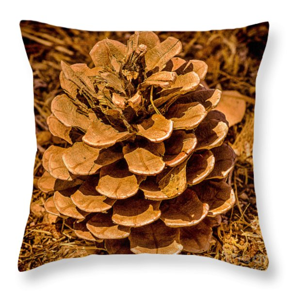 Ponderosa Pine Cone Throw Pillow by  Bob and Nadine Johnston
