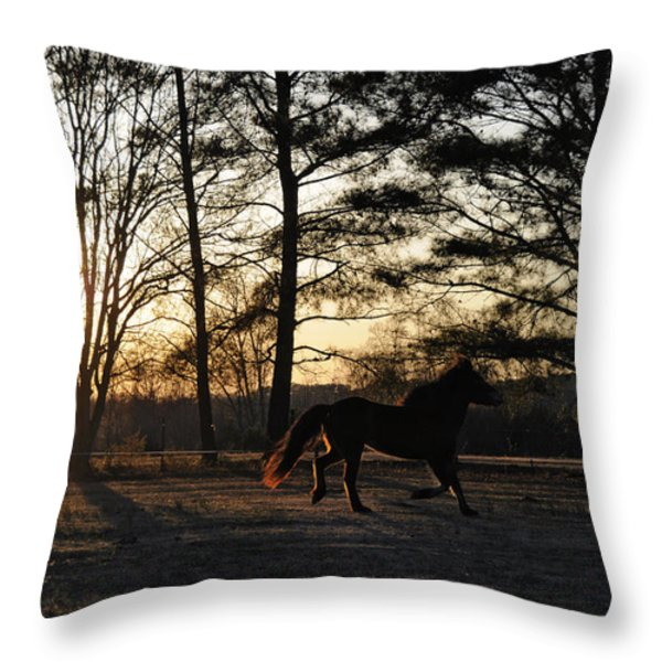 Pony's Evening Pasture Trot Throw Pillow by Paulette B Wright