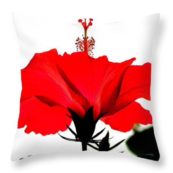 Pop Of Red Throw Pillow by Ramona Johnston