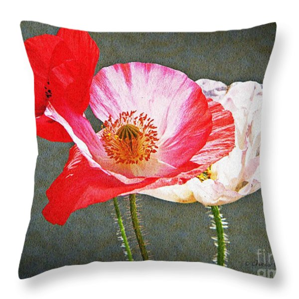 Poppies  Throw Pillow by Chris Berry
