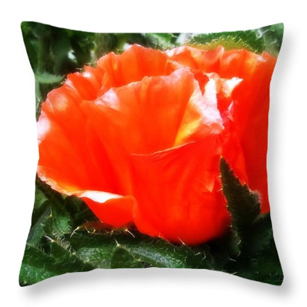 Poppy flower Throw Pillow by Heather L Giltner
