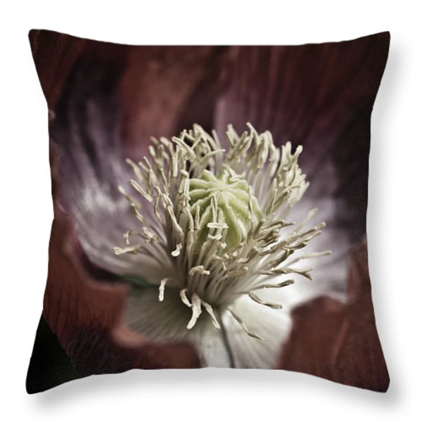 Poppy Throw Pillow by Frank Tschakert