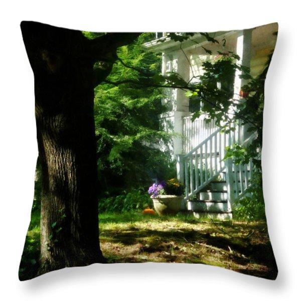 Porch With Pot Of Chrysanthemums Throw Pillow by Susan Savad