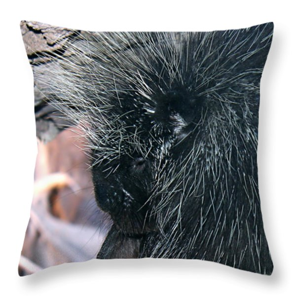 Porcupine Throw Pillow by Kume Bryant