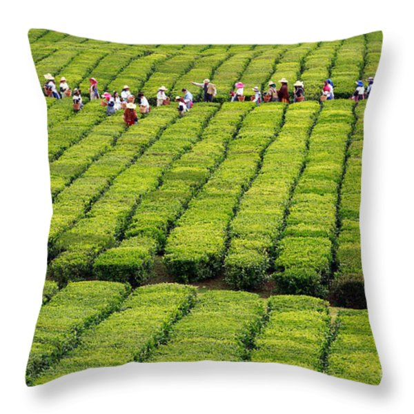 Porto Formoso Tea Gardens Throw Pillow by Gaspar Avila