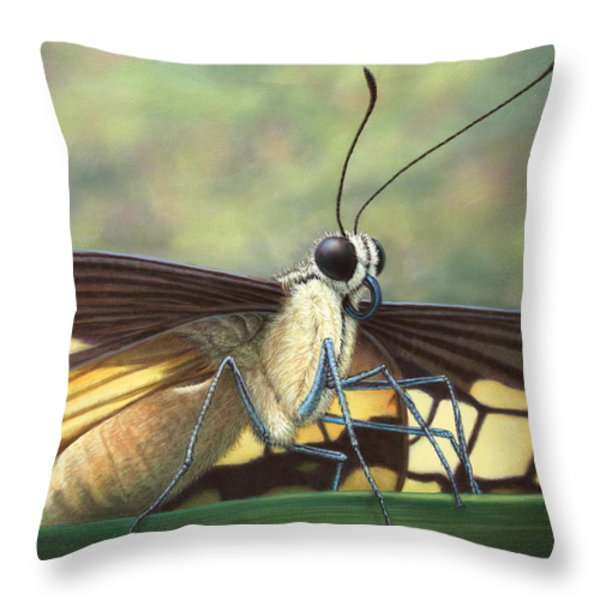 Portrait Of A Butterfly Throw Pillow by James W Johnson