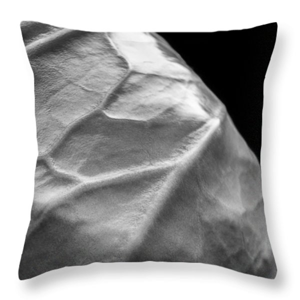 Portrait Of A Cabbage Throw Pillow by Caitlyn  Grasso