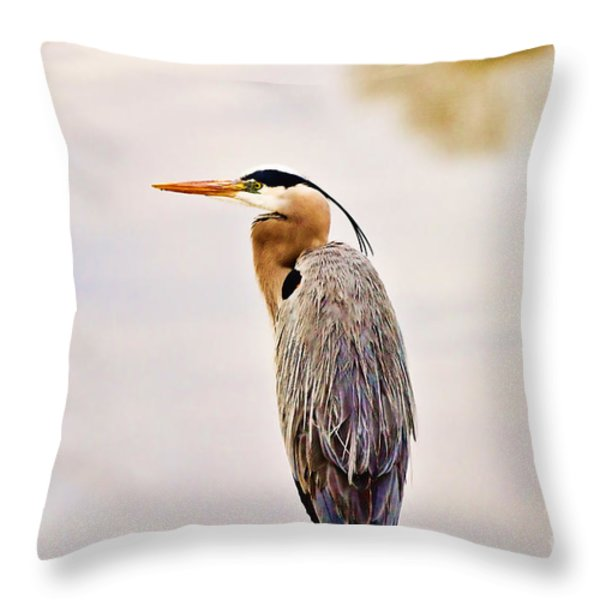 Portrait Of A Great Blue Heron Throw Pillow by Scott Pellegrin