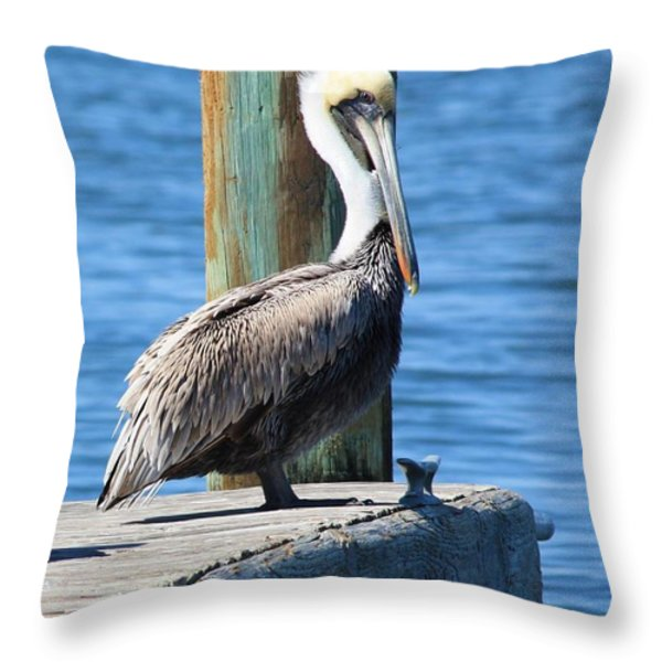 Posing Pelican Throw Pillow by Carol Groenen