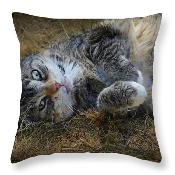 Posing Prettily Throw Pillow by Marilyn Wilson