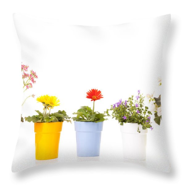 Potted Flowers Throw Pillow by Alexey Stiop