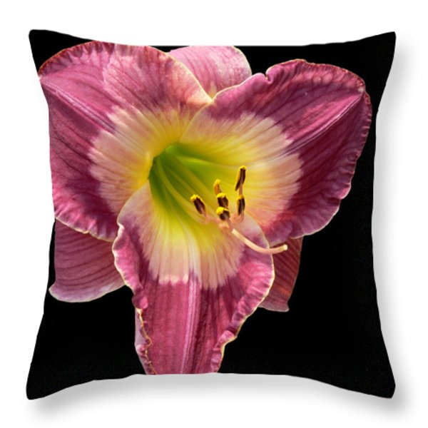 Pouty Throw Pillow by Doug Norkum