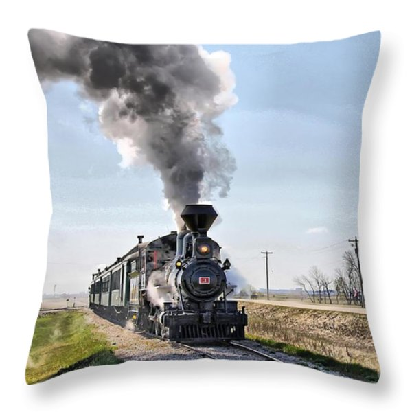 Prairie Dog Central Throw Pillow by Vickie Emms