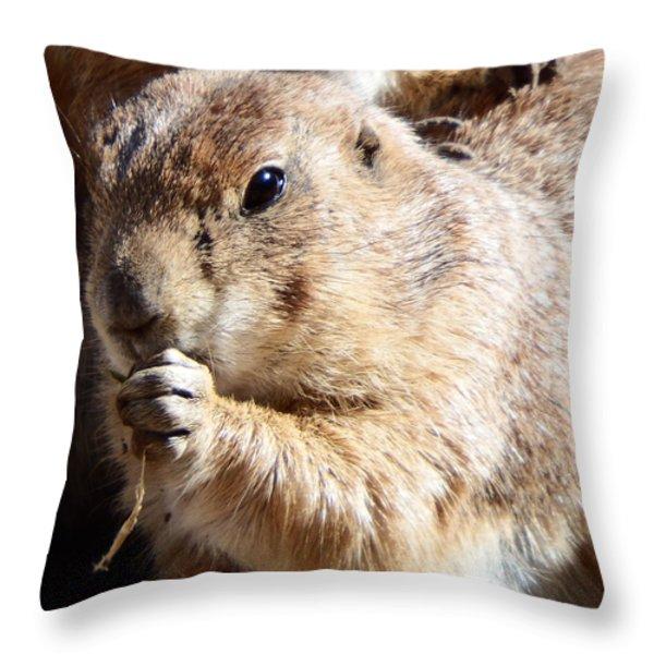 Prairie Dog Throw Pillow by David G Paul