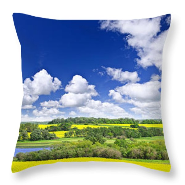 Prairie panorama in Saskatchewan Throw Pillow by Elena Elisseeva