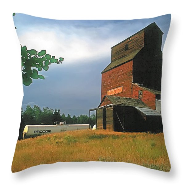 Prairie Sentinel Throw Pillow by Terry Reynoldson