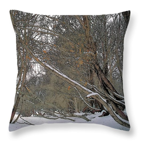 Prairie Winter 2 Throw Pillow by Terry Reynoldson