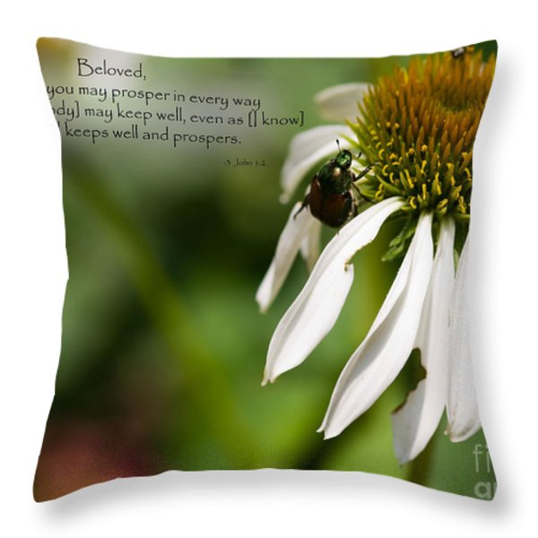 Praying For My Friend Throw Pillow by Sandra Clark