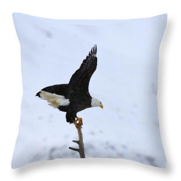 Precarious Perch Throw Pillow by Mike  Dawson