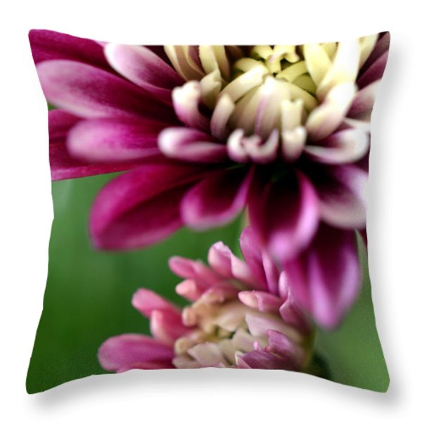 Present and Future Throw Pillow by Deb Halloran