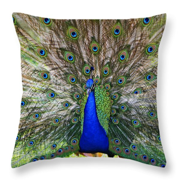Pretty As A Peacock Throw Pillow by Tony  Colvin