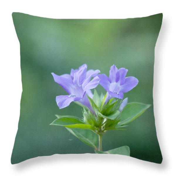 Pretty In Purple Throw Pillow by Kim Hojnacki