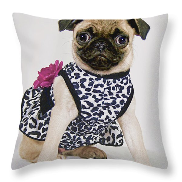 Pretty Party Pug Throw Pillow by Bonnie Willis