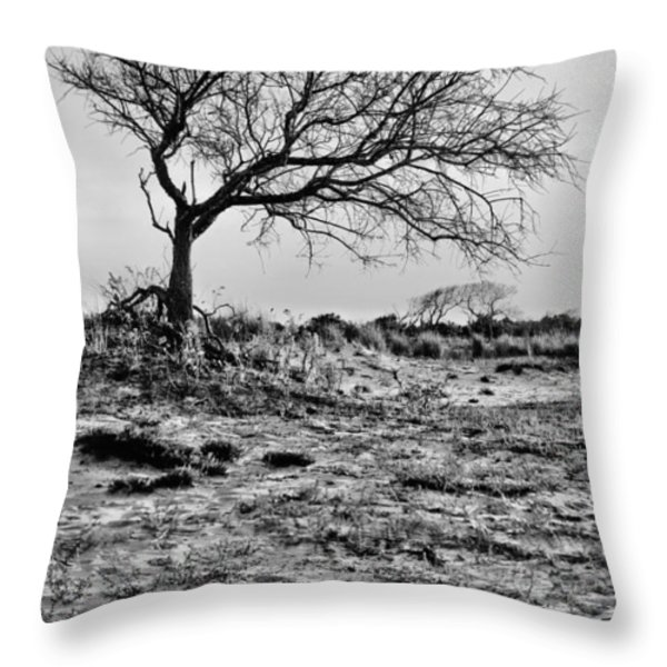 Prevailing Bw Throw Pillow by JC Findley